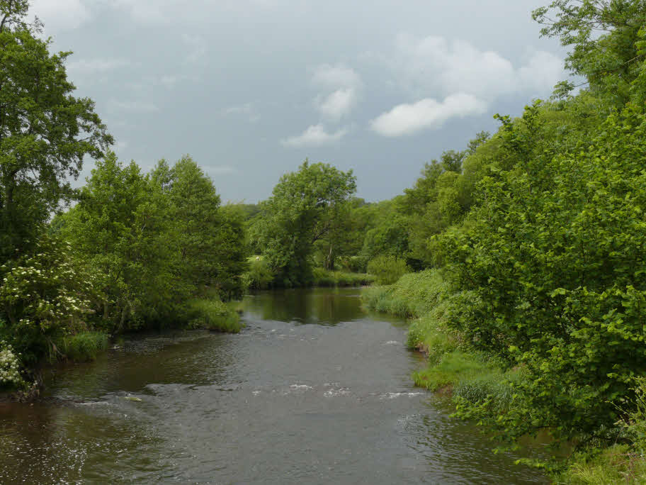 Devon's River Taw - one of England's finest game fishing rivers
