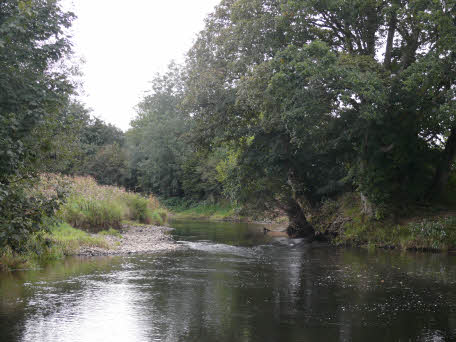 River Taw - Devon