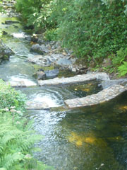 Sticklepath Weir After